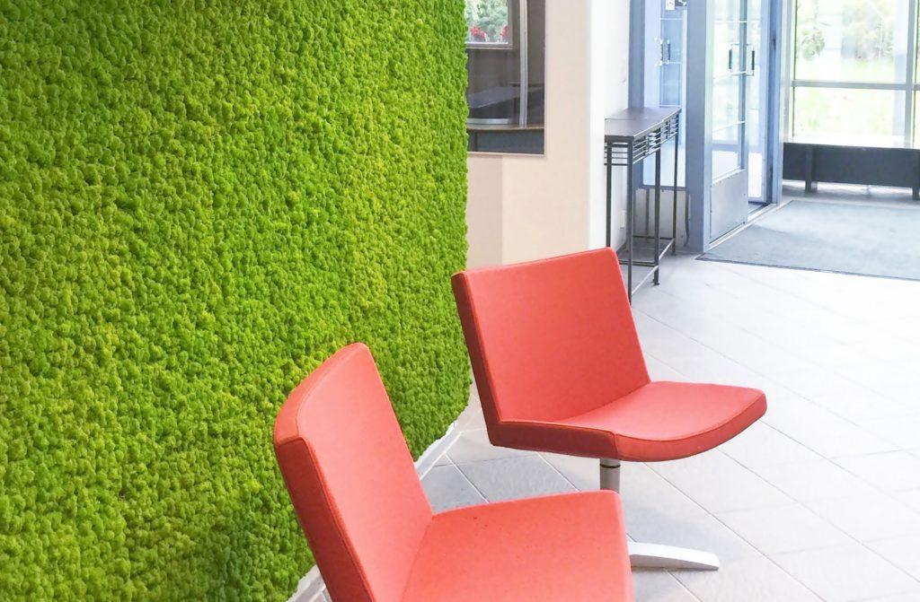 Moss wall panels