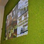 vtec-arctic-moss-in-may-green-showroom-design-4